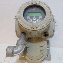 Đồng hồ đo khí Oxy phòng nổ PANAMETRICS XDP